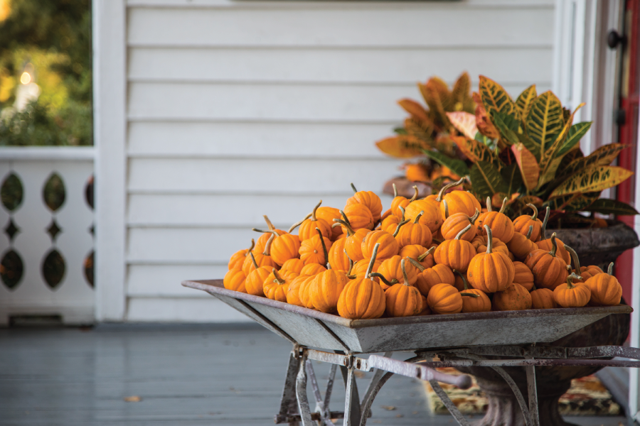 Outdoor Fall and Halloween Decorating Ideas